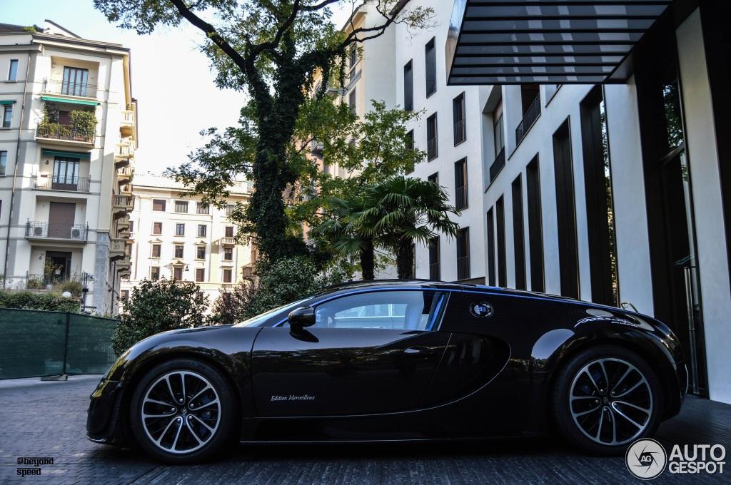 Bugatti Veyron 16.4 Super Sport Edition Merveilleux 3