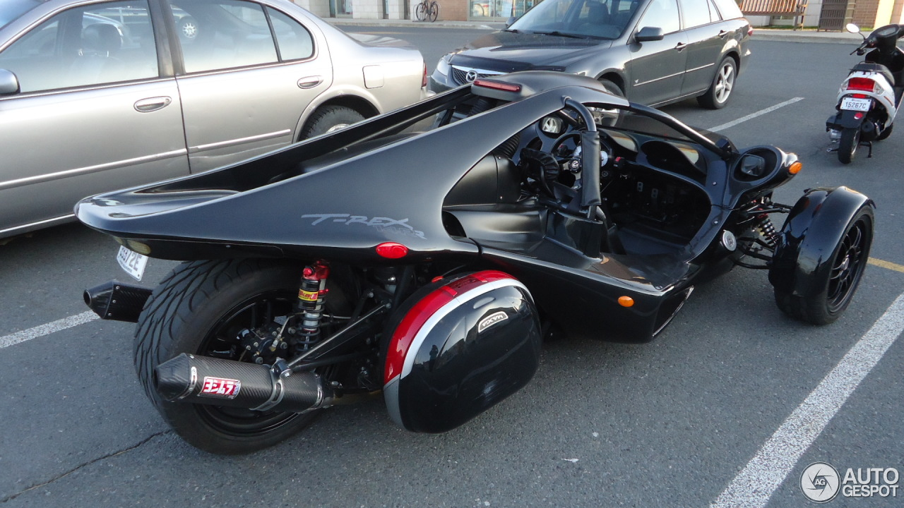 Campagna t rex aero 3s related keywords campagna t rex for T rex location