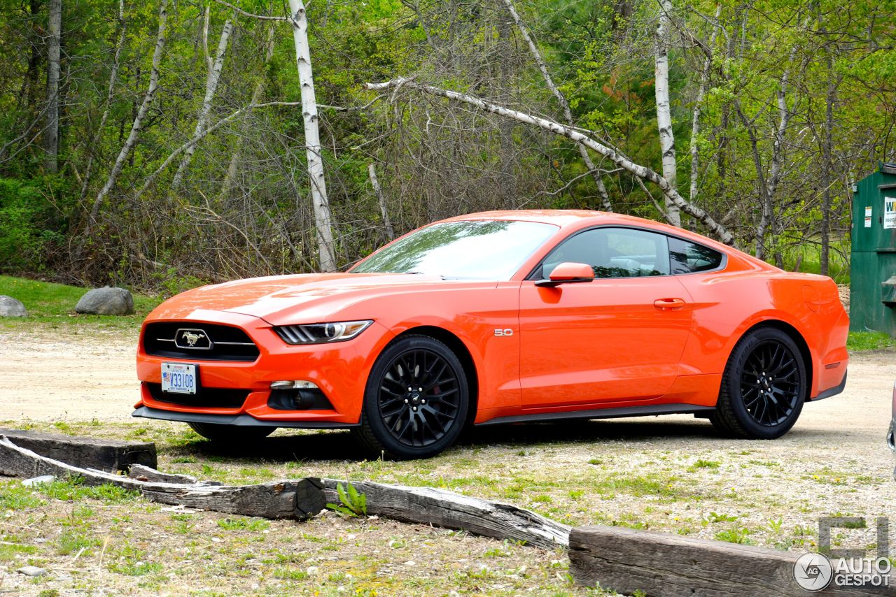 2015 Mustang Colors >> Ford Mustang GT 50th Anniversary Edition - 24 May 2015 ...
