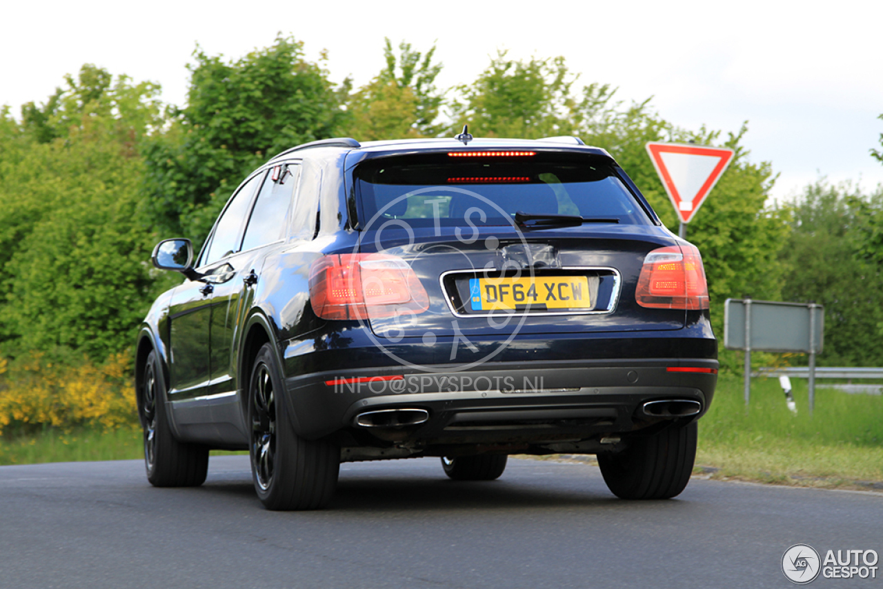 2016 Bentley Bentayga (SUV) 54