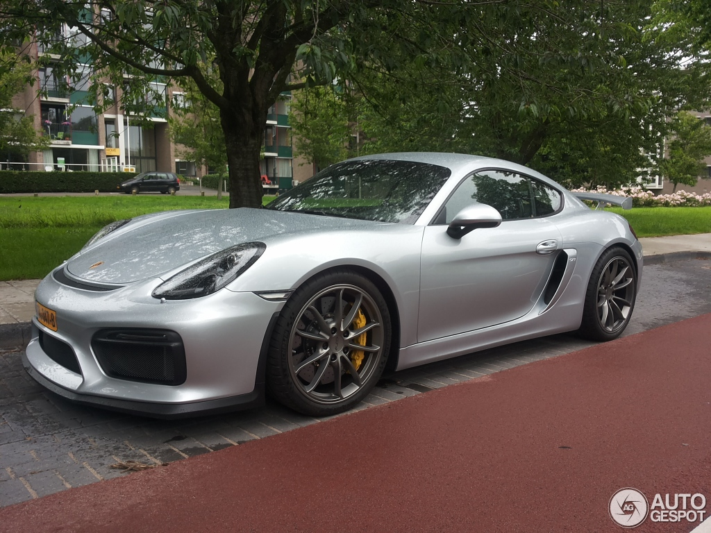 porsche 981 cayman gt4 28 juin 2015 autogespot. Black Bedroom Furniture Sets. Home Design Ideas